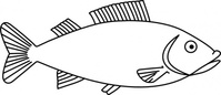 fish,outline