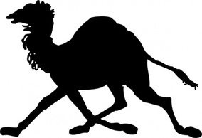 Animals,Silhouette