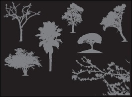 Nature,Flowers & Trees,Silhouette,Objects