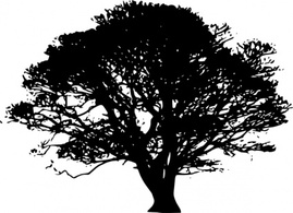 Flowers & Trees,Silhouette,Nature,Shapes