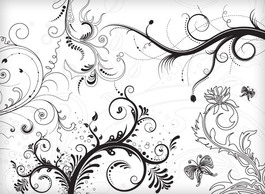 Flourishes & Swirls,Ornaments,Patterns,Flowers & Trees