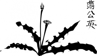 Flowers & Trees,Silhouette