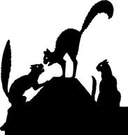 Silhouette,Animals