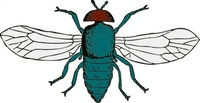 blue,bottle,animal,insect,fly,media,clip art,externalsource,public domain,image,png,svg