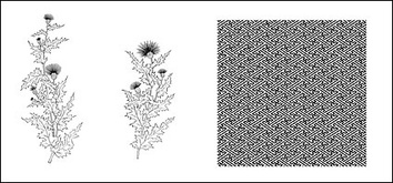 Backgrounds,Flowers & Trees