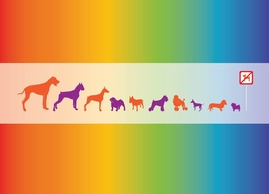 Animals,Backgrounds,Silhouette