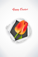 Backgrounds,Holiday & Seasonal,Flowers & Trees,Business