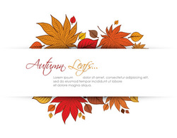 Holiday & Seasonal,Elements,Ornaments,Flourishes & Swirls,Flowers & Trees,Templates,Abstract