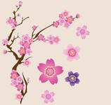 cherry tree,floral,flower,flowery,pink flower,cherry flower,japanese cherry tree