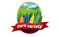 corn,nature,earth,organic,field,planting,agriculture,food,vegetable,fruit,sky,environment,variety,agricultural,color,green,wheat,logo,natural