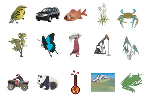 Signs & Symbols,Animals,Objects,Flowers & Trees,Transportation,Holiday & Seasonal,Logos,Maps