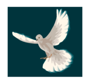 animal,bird,fauna,feather,wing,flying,peace,dove,wing