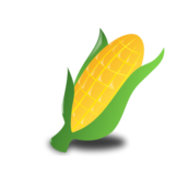 worldlabel,kwanzaa,food,corn,event,holiday,occasion,icon,color