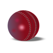cricket ball,leather ball,sports2010