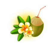 tropic,coconut,cocktail,drink,food,flower,tropical,hawaii,vacation,vacation,fruit,fruit